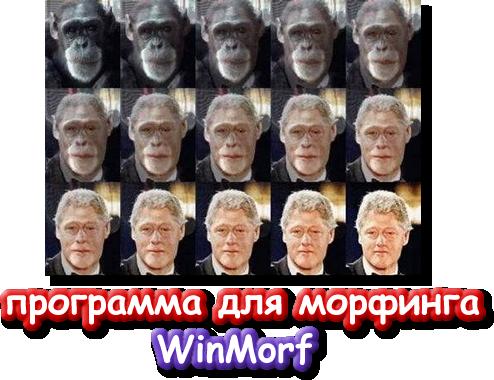 морфинг фото - фото 3