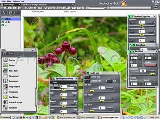Opinions about StudioLine Photo Basic