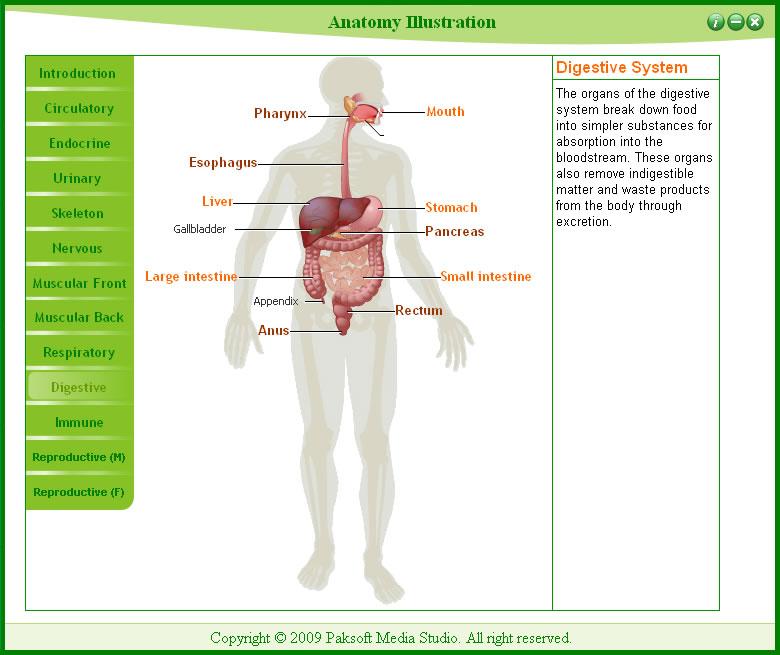 скачать приложение анатомия - фото 8