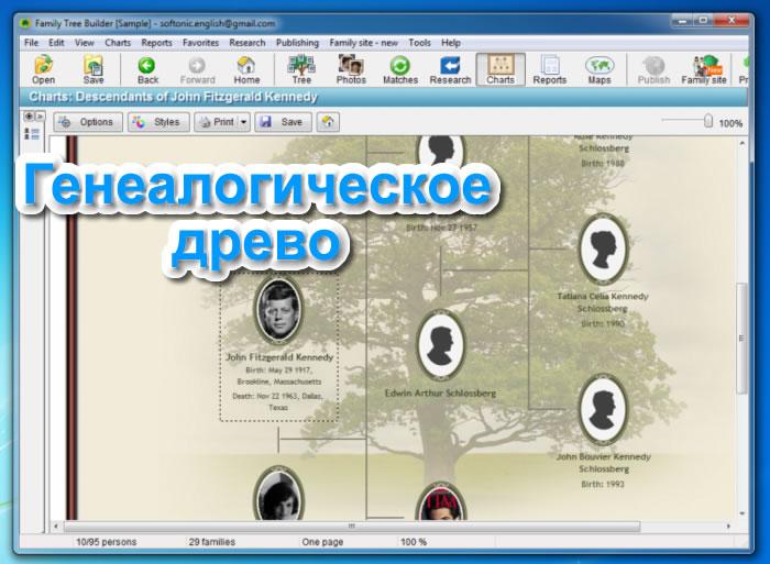 Программа для создания генеалогического древа скачать